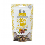 Brit Care Shiney Hair (50gms)