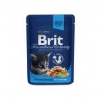 Brit Gravy Chicken Chunks For Kitten (100gms)
