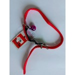 CAT STRETCH COLLAR W/ELASTIC (10mm x 30cm)
